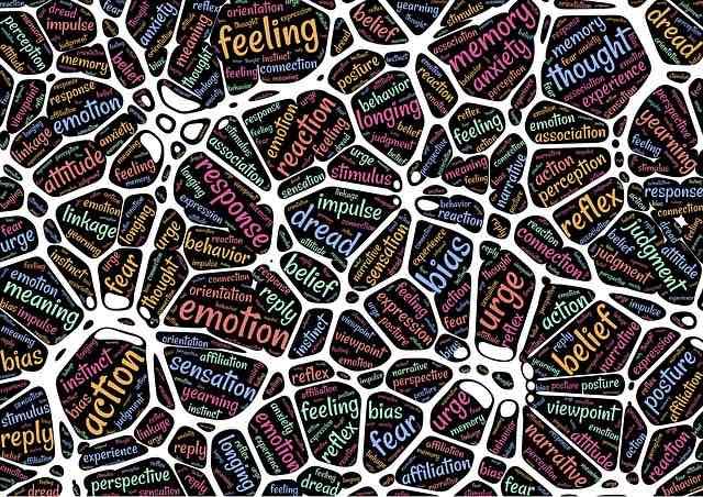 Les neurosciences pourraient-elles venir en aide à l'E-commerce ?